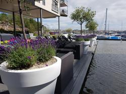 växter och krukor till Strömstad Spa