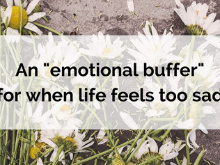 "An ""emotional buffer"" for when life feels too sad"