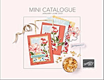 2021 mini catalogue.JPG