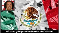 México: ¿Emprendimientos de Cáñamo Industrial en México? ¡Comienza Ya!