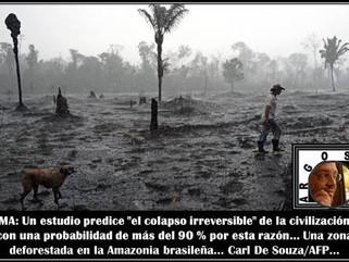 """MA: Un estudio predice """"el colapso irreversible"""" de la civilización con una probabilidad d"""