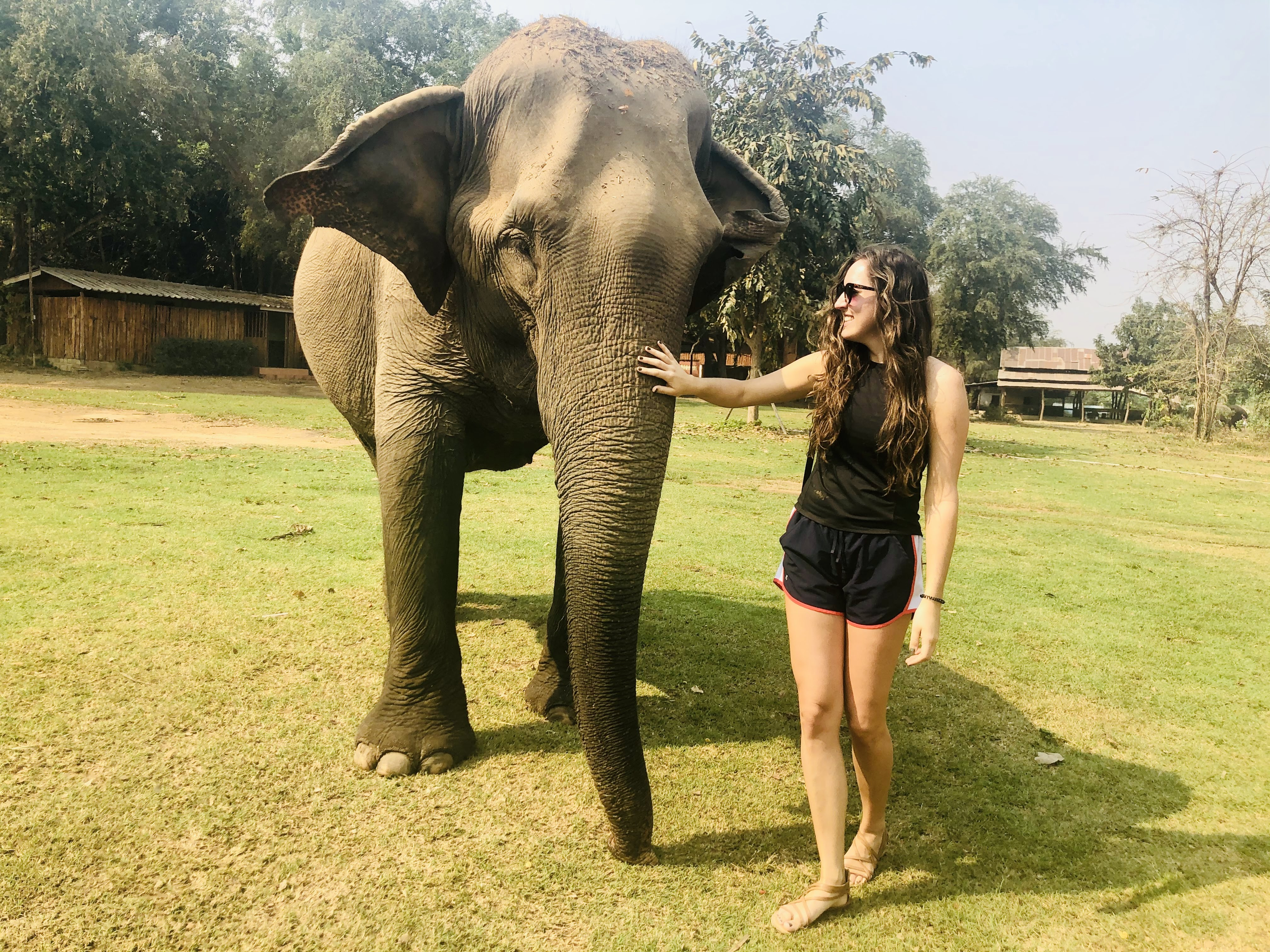 The Savvy International Founder visiting an elephant sanctuary called Elephant World.