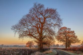 Maxstoke Frosty Sunrise No 6.jpg