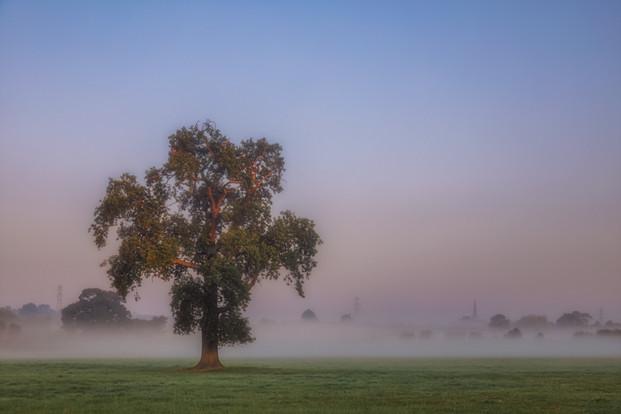 Morning Fog in Coleshill No 4.jpg