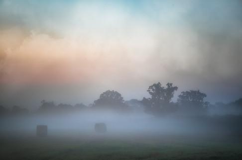 Farmland Fog No 2