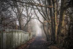 Woodland Barrier