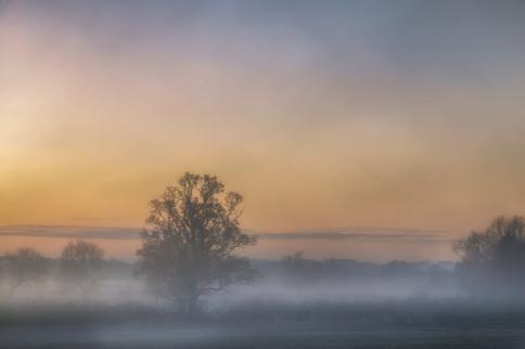 Maxstoke Frosty Sunrise No 1