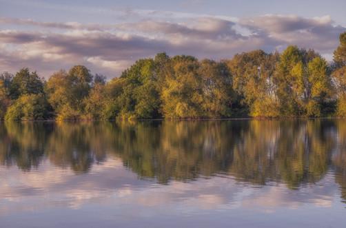 Lea Marston Lakes in Spring No 6