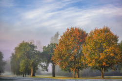 Autumn on the Golf Course No 1 (1)