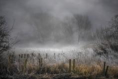 Frozen in Coleshill No 11