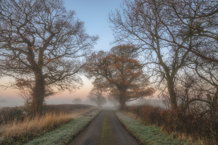 On The Frosty Road No 1.jpg