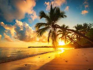 BEST PLACES to visit near Punta Cana on your Honeymoon