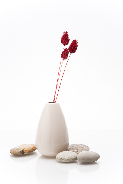 Vase and Dried Flowers