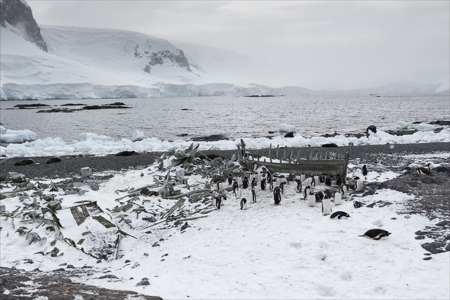 Whaling Detritus