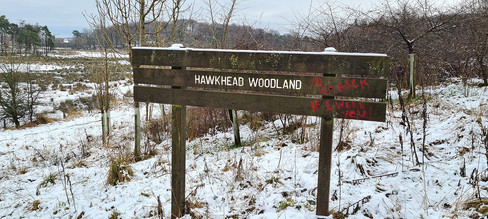 Hawkhead Sign
