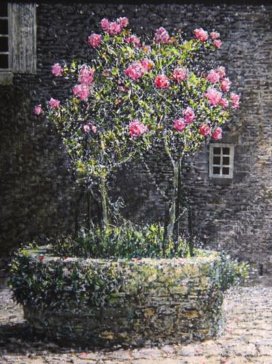 古城の薔薇(フランス)