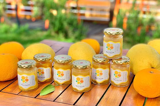 爽やか系柑橘のマーマレード