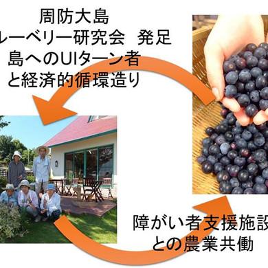 satoyama_2.jpg