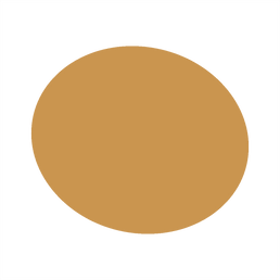 ellipse mustard.png