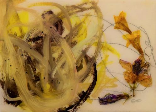 jasmine, 30x40 oil, flowers,resin on wood
