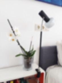 Flexible lamp with press, lampara flexo con prensa