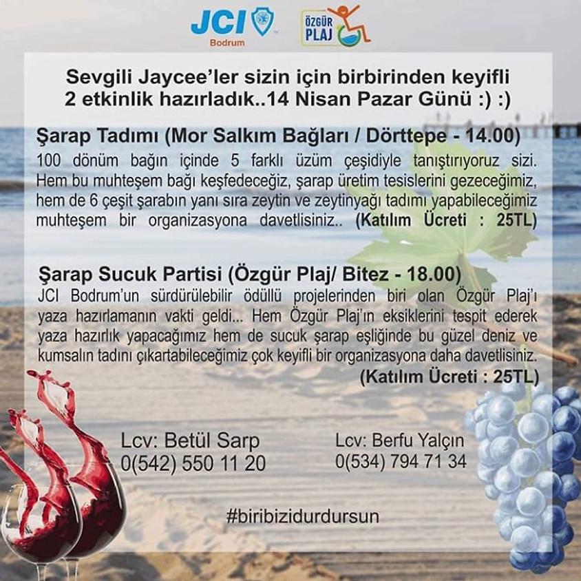 JCI Bodrum Özgür Plaj Etkinliği