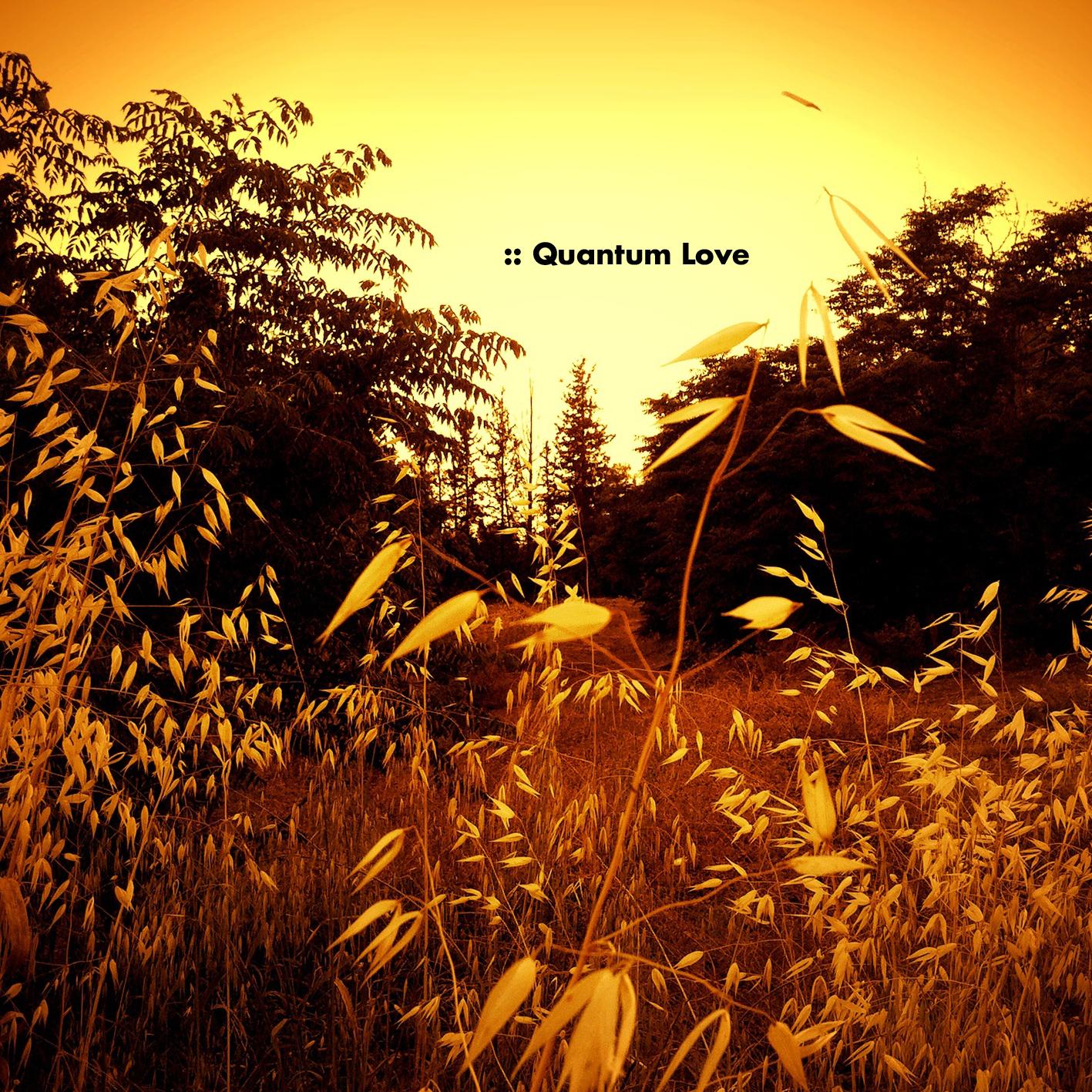 QUANTUM-LOVE