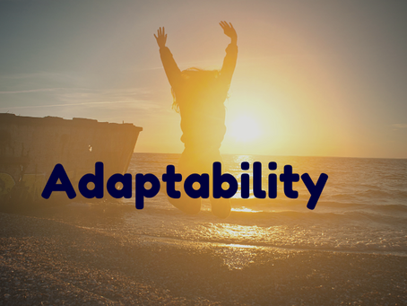 Promote Resilience With Adaptability Skills