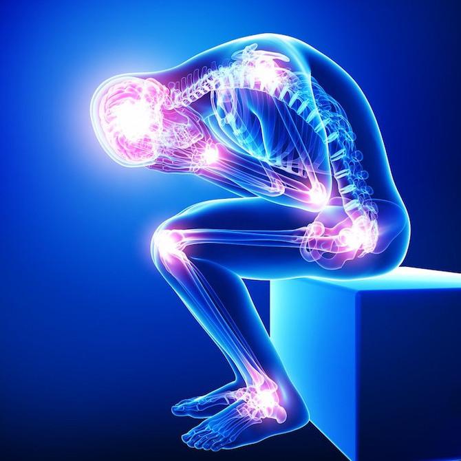 Meu Corpo Dói. Alimentação na Fibromialgia.