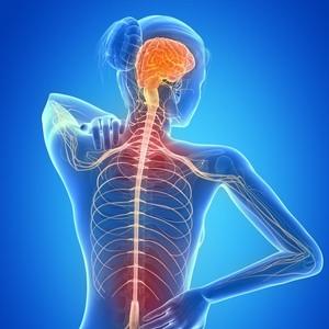 Esclerose Múltipla e a Alimentação