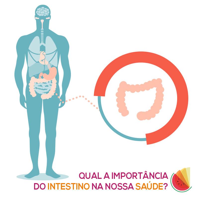 Intestino saudável