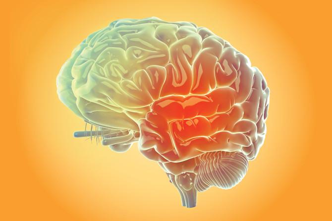 Glúten e o Sistema Nervoso