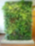 Muro verde Plant Art