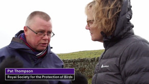 3rd Dec - Pat Thompson, RSPB Senior Uplands Policy Officer