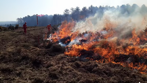 Activists 'waste emergency services time' after calling out fire brigade for controlled burning