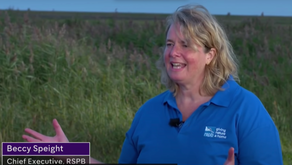 Actions speak louder than words - why RSPB's Beccy Speight's words ring hollow