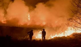 To protect the environment we must prevent moorland wildfires