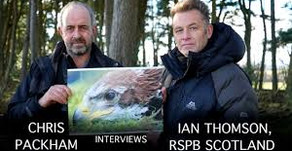 Fieldsports TV investigation reveals 'dark arts' being used by RSPB to persecute gamekeepers