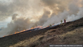 Top LSE scientist calls for increased use of controlled burning to prevent wildfires
