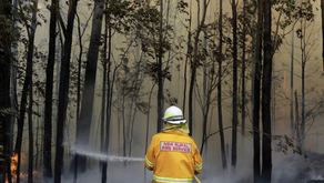 Bushfires and the blame game