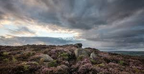 Robert Goodwill MP: Why grouse shooting matters for moorland communities