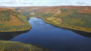 The RSPB have spent millions of public money on the Lake Vyrnwy reserve, yet wildlife has plummeted