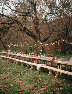 Fall Wedding Dinner Seating