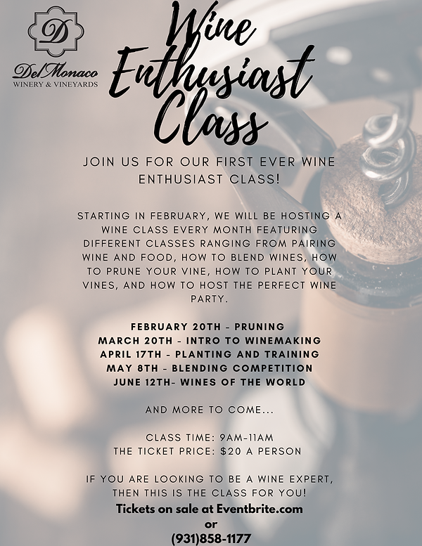 Wine Enthusiast Class.png