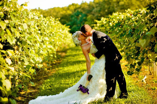 Kissing in the Vineyard