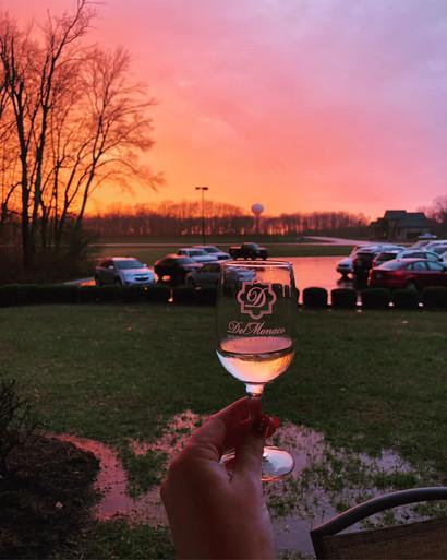 Beautiful sunset over the vineyards