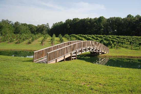 Cross the bridge at the pond
