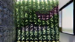 Jardim vertical Coco Bambu