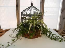 birdcage miniature garden.jpg