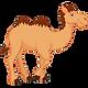 camel-png-cartoon--600 copy.png